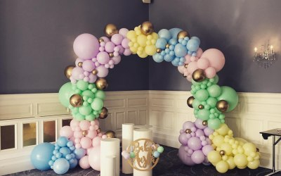 Baby Shower - Full Organic Arch